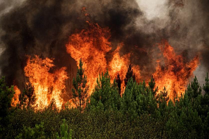 Estudo conduzido por equipa de investigação da Universidade de Évora aponta para a possibilidade de estimar a probabilidade de ocorrência e as regiões onde os incêndios florestais podem ser originados naturalmente por raios