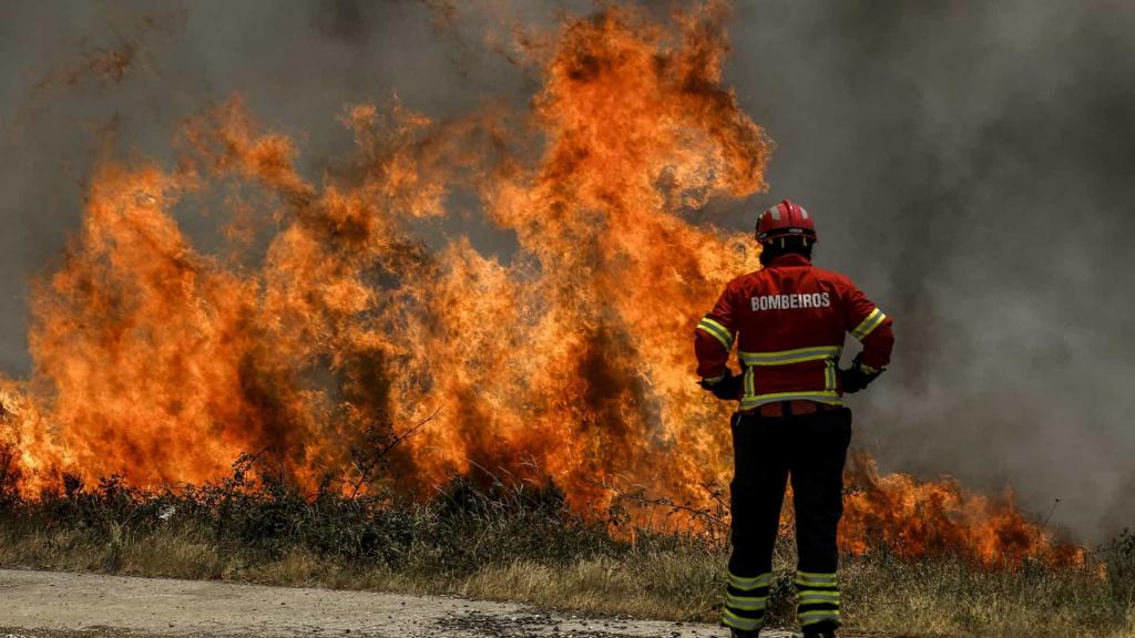Como a ciência pode ajudar a mitigar os incêndios florestais? Sérgio Godinho e Nuno Guiomar na Rádio Ciência, Diana FM